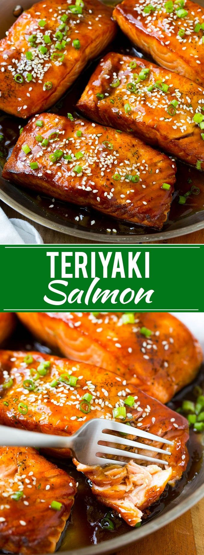 Salmon Teriyaki - Dinner at the Zoo