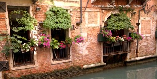 Window boxes in Venice - 100 reasons to visit Venice at http://www.venice-italy-veneto.com/why-visit-venice.html