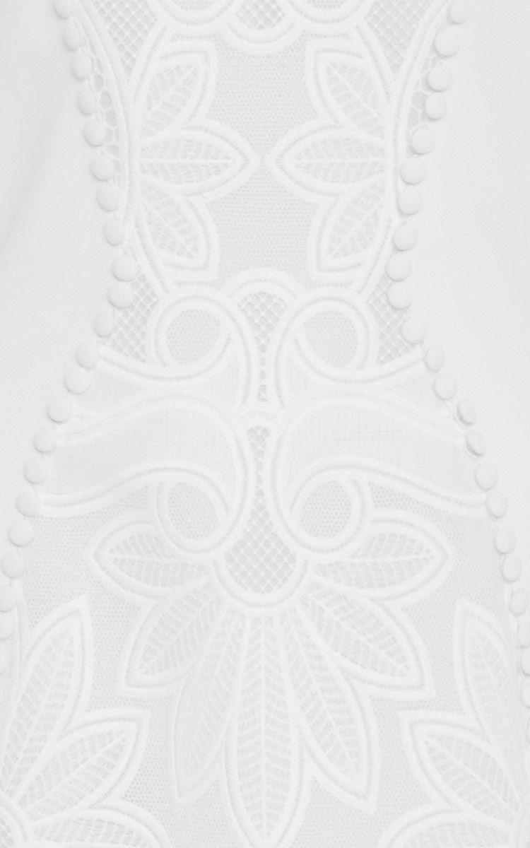 Fitted Sleeveless Dress by Antonio Berardi for Preorder on Moda Operandi