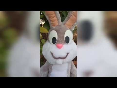 Looney Tunes Bugs Bunny Soft Toy | Bugs Bunny Plush with Free partten #bunnyplush