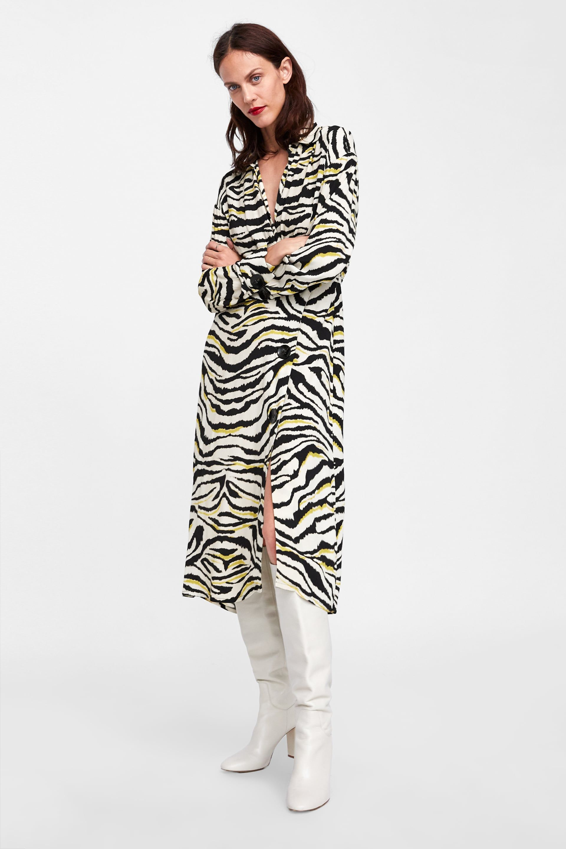 bfdf693a49c2 Image 1 of ZEBRA PRINTED DRESS from Zara | Trend FW19: Animal Style ...