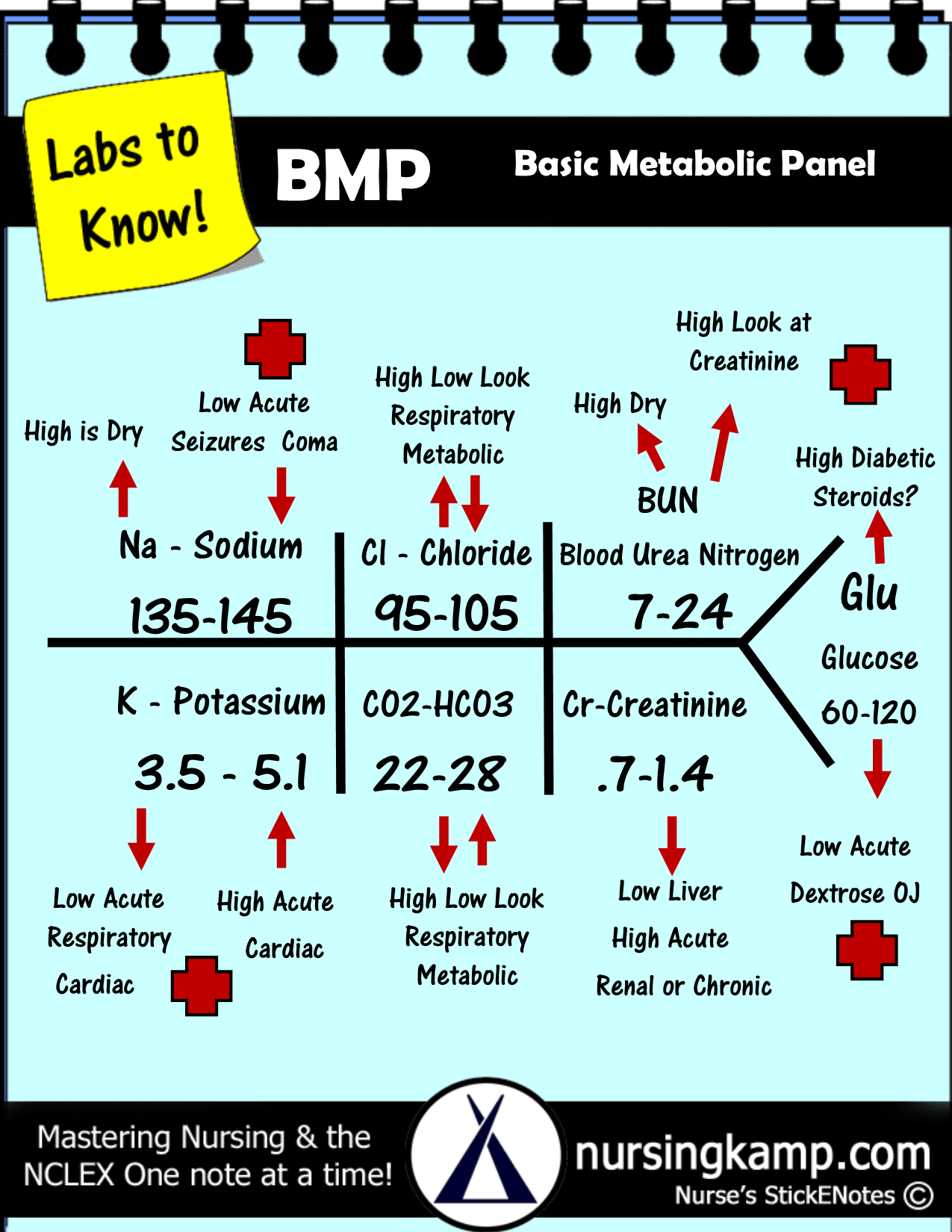 Bmp basic metabolic panel nursing resolution review and bmp fishbone diagram explaining labs from the blood book theses are the labs you should know hyponatremia sodium lab value blood hyponatremia mnemonic ccuart Images