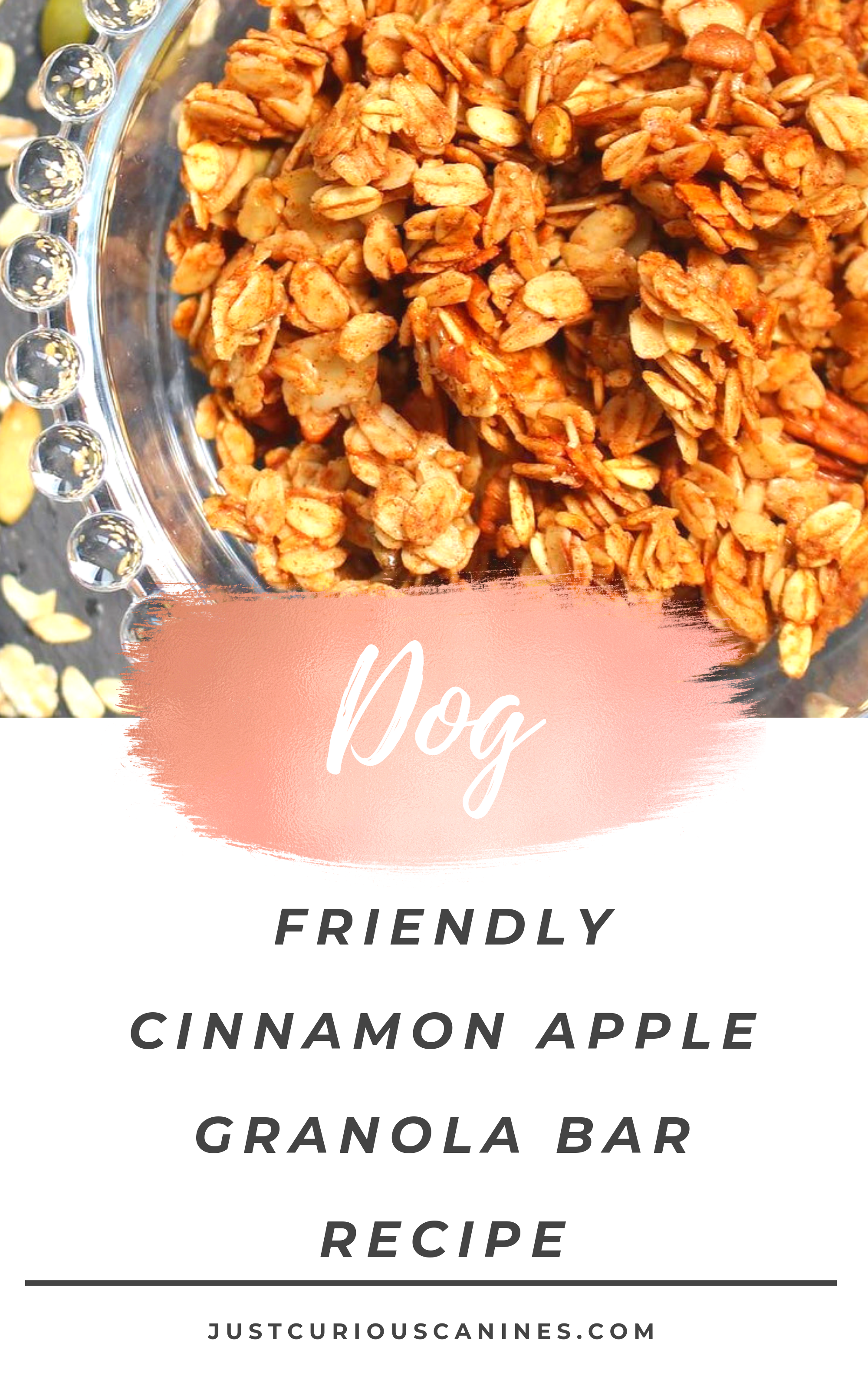 Dog Friendly Cinnamon Apple Granola Bars Recipe Dog Food Recipes Dog Treat Recipes Dog Recipes