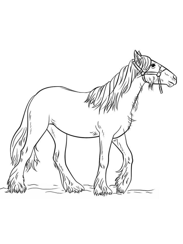 Wild Horse Coloring Pages Pict Horses Are Known As Runner Animals So They Are Often Used As Fast Transportati Horse Coloring Horse Coloring Pages Wild Horses
