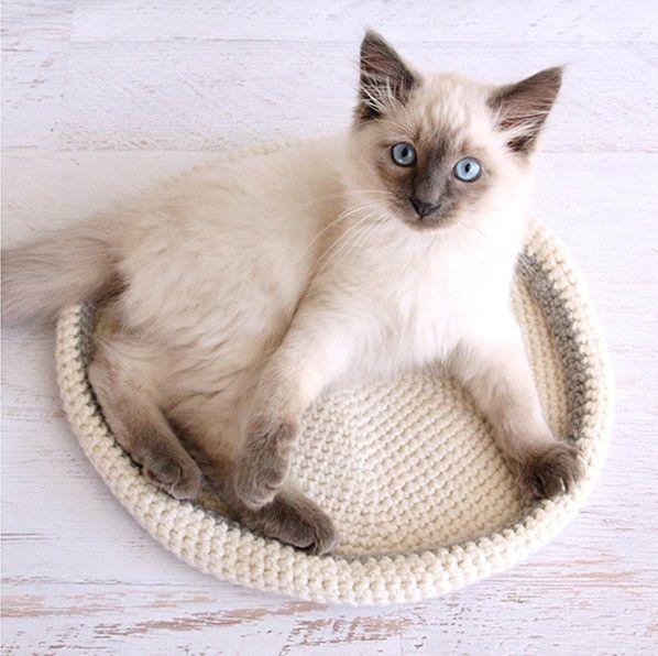 20 Crochet Shawl Patterns Crochet Cat Bed Crochet Cat Cat Bed