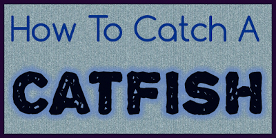 It Is What It Isn't How To Catch An Online Catfish on