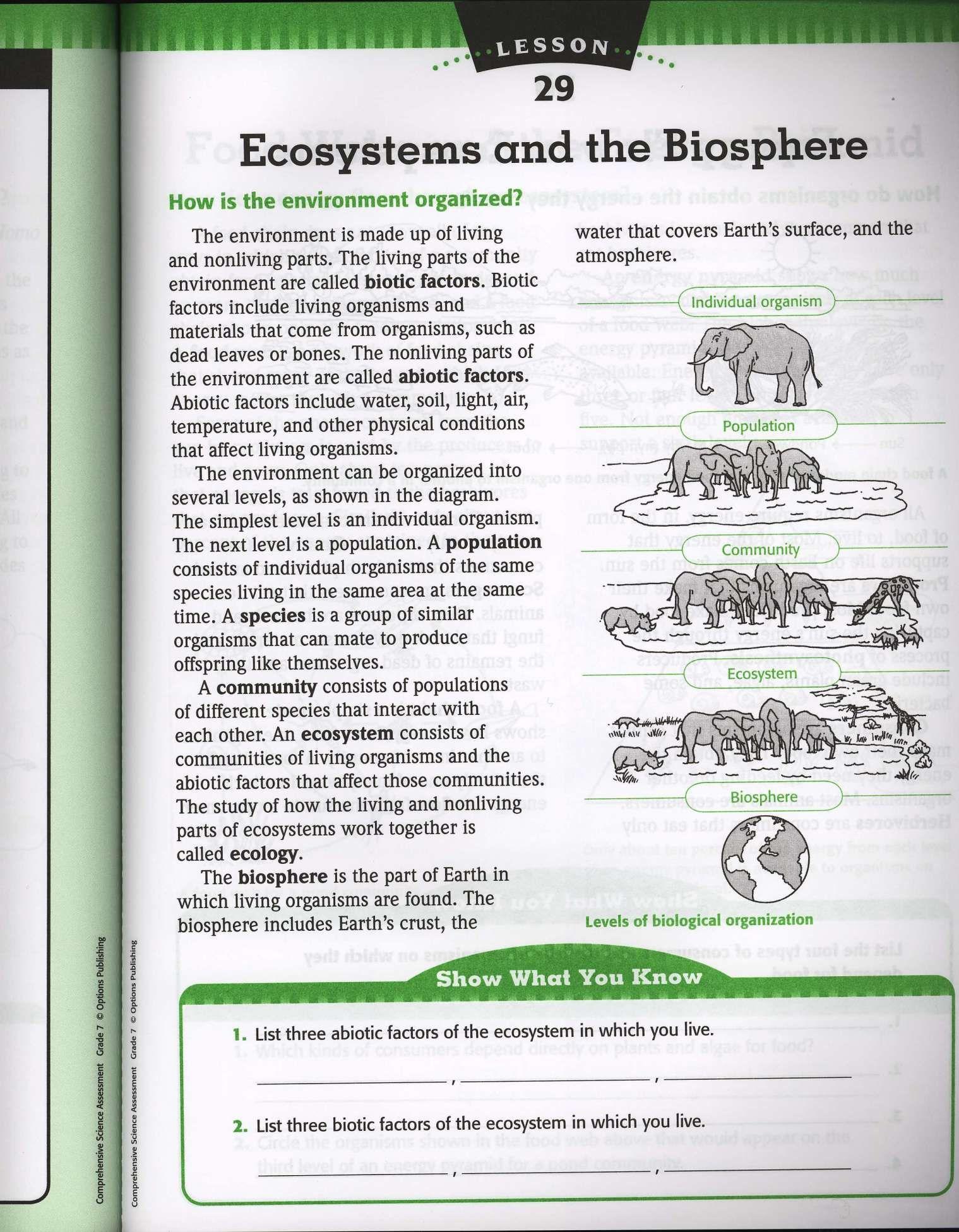 10 Ecology Worksheet And Reading