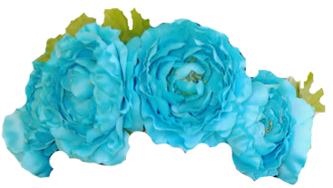 A plethora of flower crowns with transparent backgrounds.