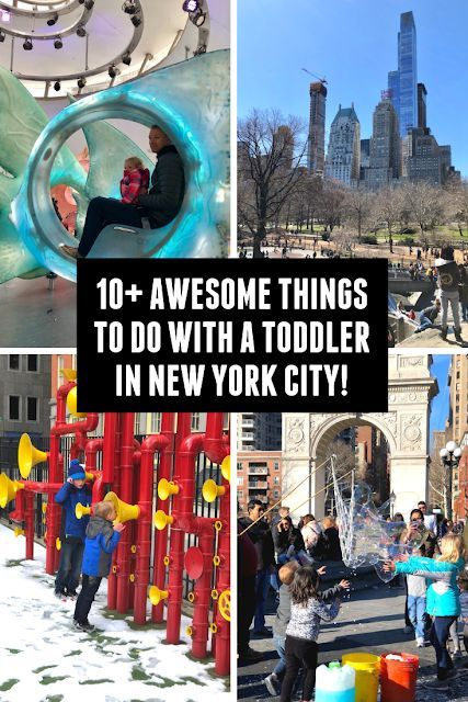 10+ Awesome Things To Do With A Toddler In New York City