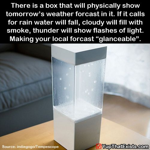 There is a box that will physically show you tomorrow's