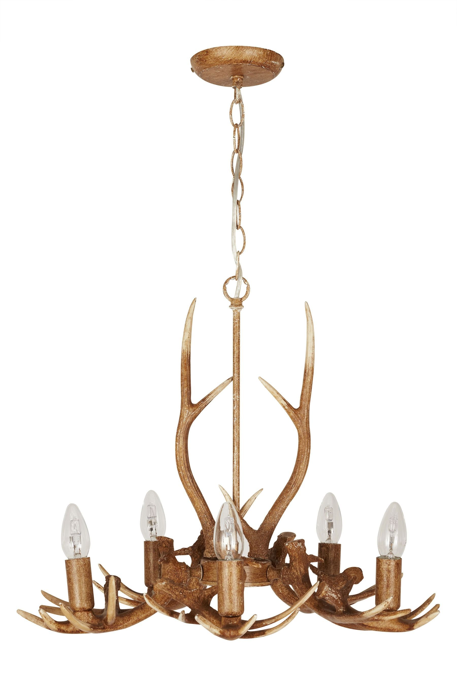 Buy antler 5 light from the next uk online shop home sweet home buy antler 5 light from the next uk online shop arubaitofo Choice Image