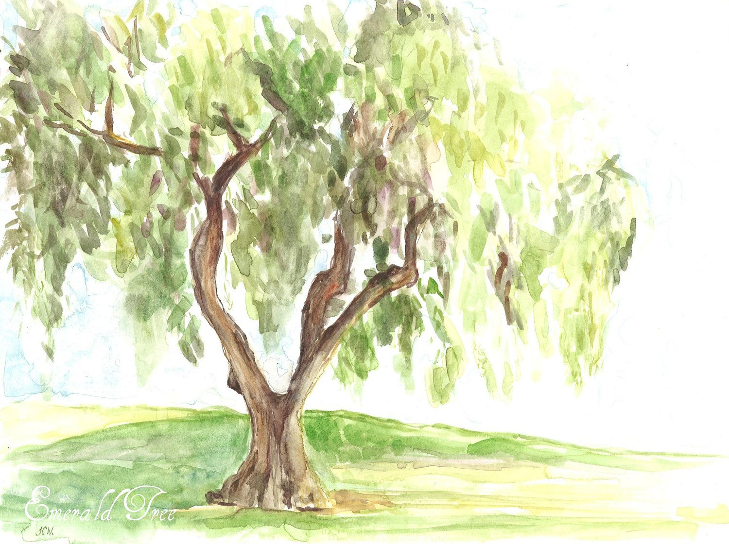 Weeping Willow Tree original watercolor by Emeraldtree on Etsy ...