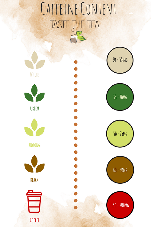 Caffeine Content In White Tea Green Tea Oolong Black Tea And Coffee Infographic Caffeine Content White Tea Oolong