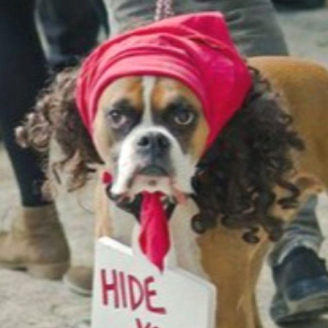 Hide yo kids... Ahhh! So funny!