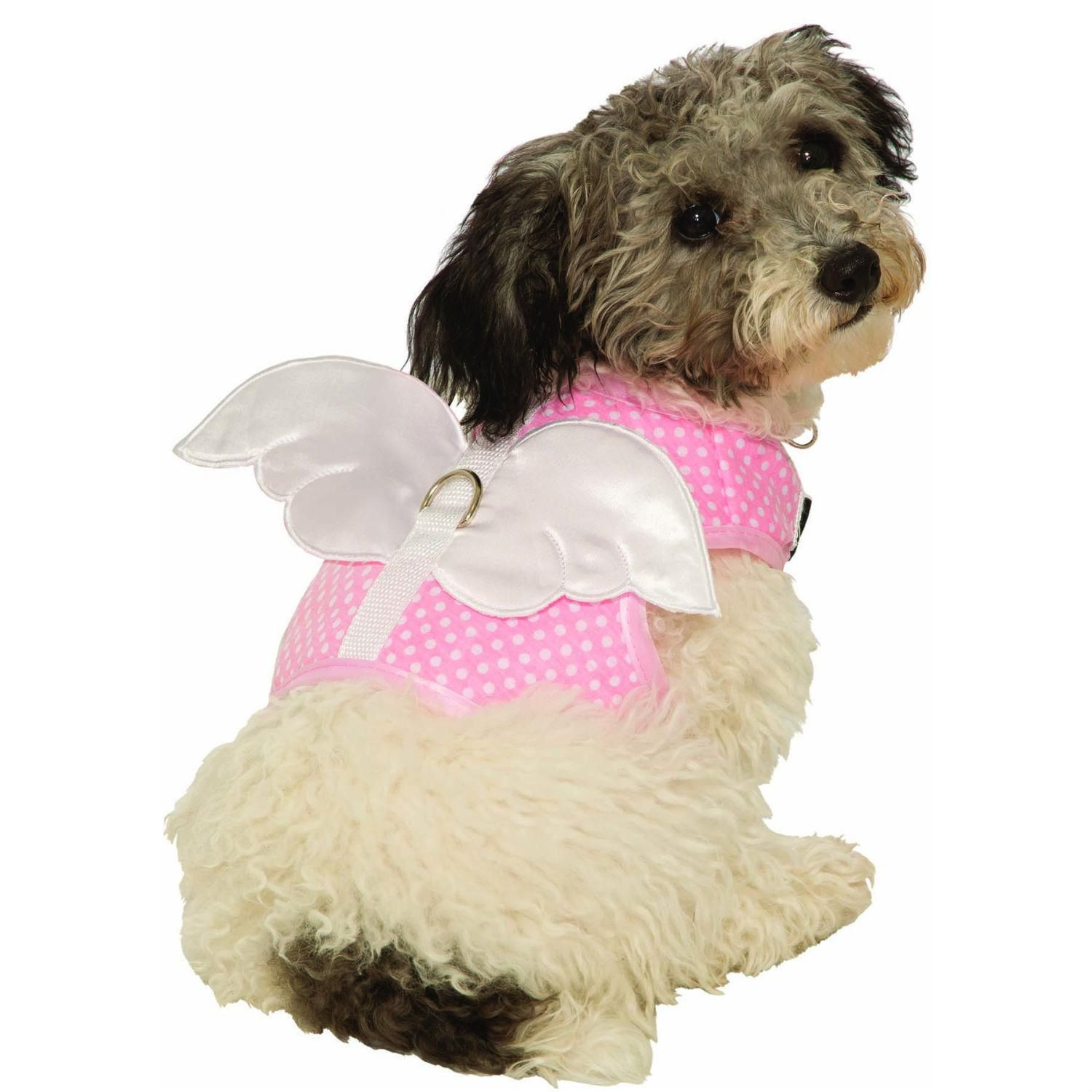 Fairy And Angel Wing Dog Harness Costume At Baxterboo Com Pet