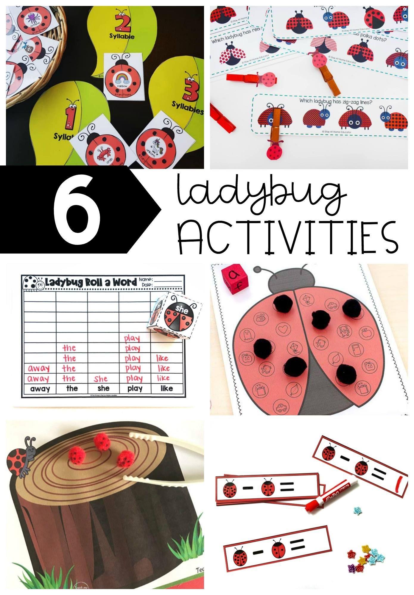 Ladybug Syllable Sort