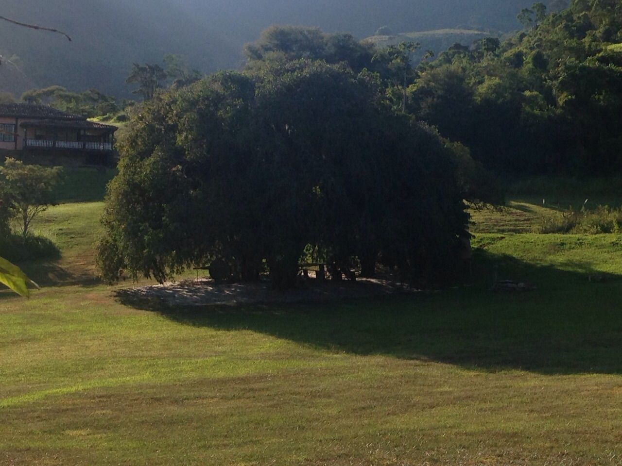 Reservado Ibitipoca- Jabuticabeira