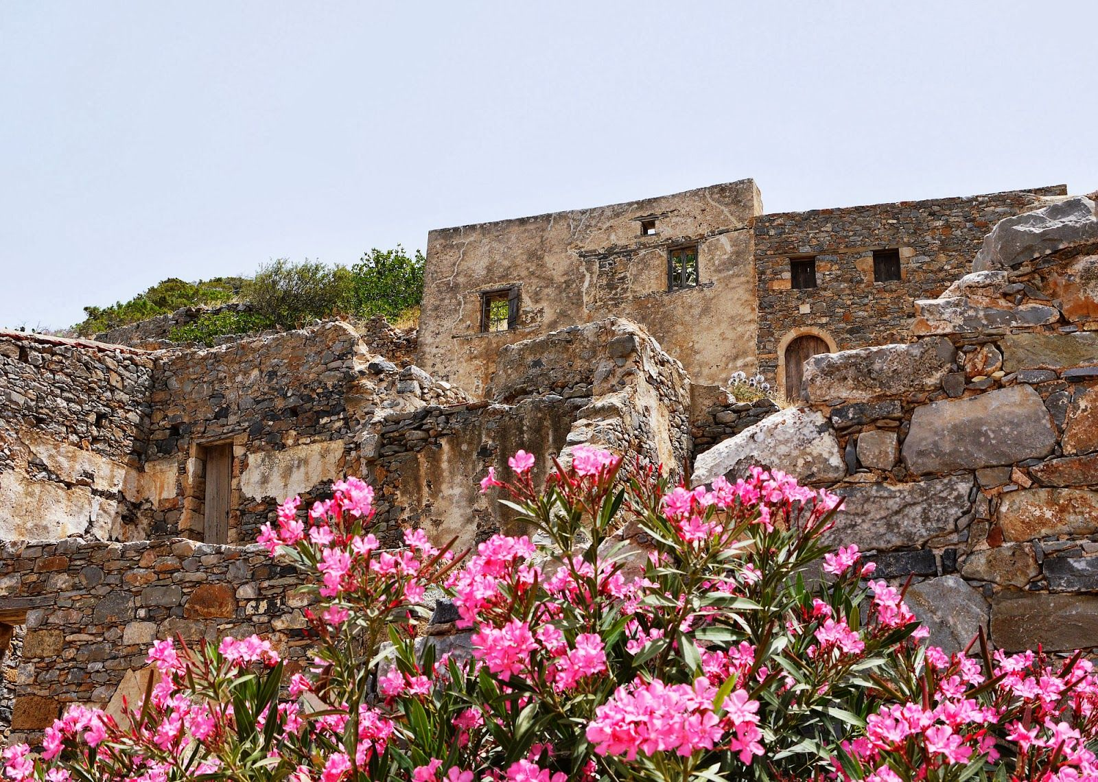 Blooming flowers on the island of Spinalonga