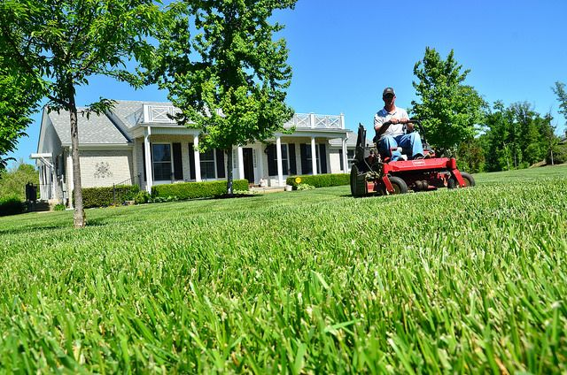 Landscaping Greenpal Lawncare Gardening Lawn Services