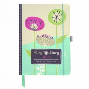 Get organised in 2013! This fabulous diary has two pages per week, so you can have your work on one side, and your home on the other! Or work and home, parents and children! Highly recommended by Clare - she has one! Every 3 months you will find a useful storage pocket too, perfect for bills, receipts,and reminder notes. Measures 13.5 x 18.5 cms.
