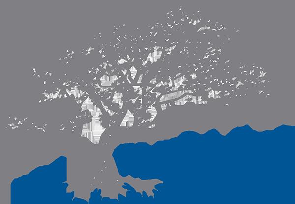 Company Information WhiteOak Group Tree logos, Oak