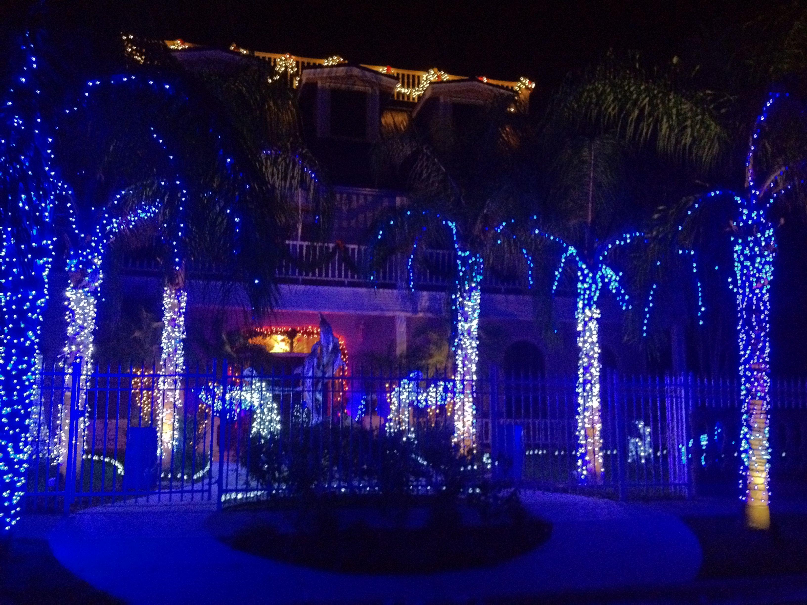 blue christmas lights argos and elegant blue led indoor christmas lights