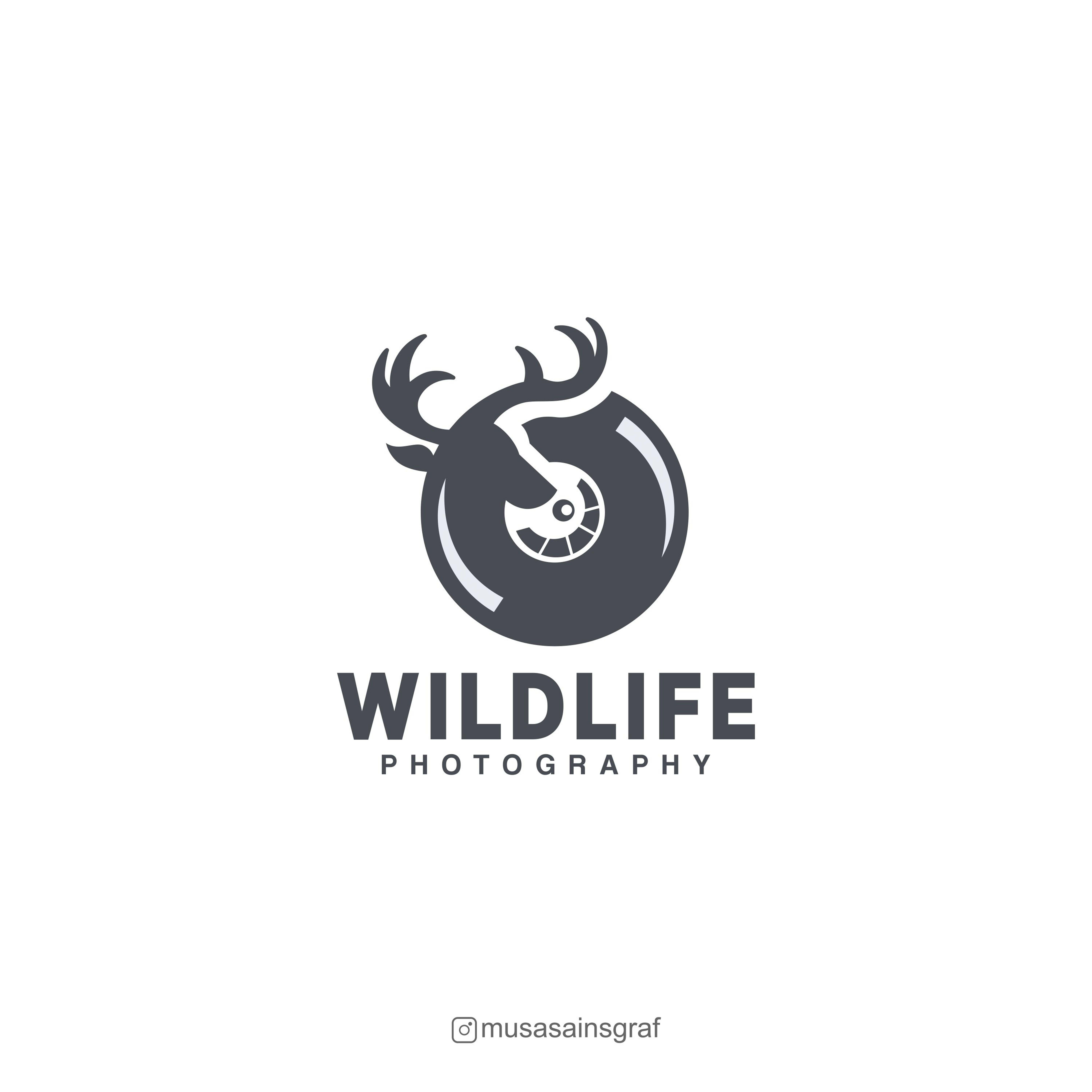 Wild Life Photograohy Logo Design Minimalist Modern Clean Elegant Animal Logo Design Pet Logo Design Animal Logo Photography Logo Design