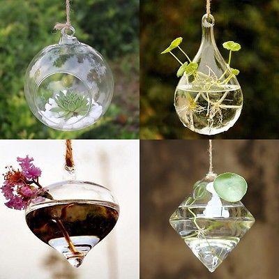Colgante Cristal Florero Flores Planta Hidropónica Jarrón Recipiente Decoración