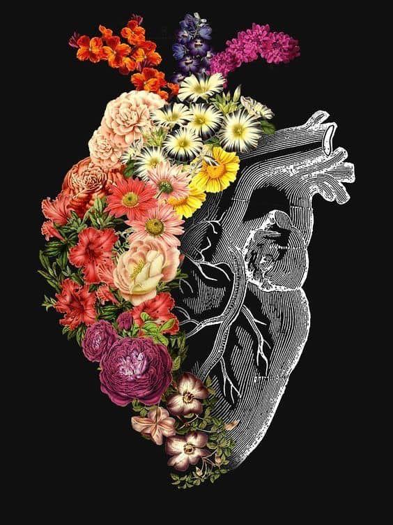 Pin by Лада Калина on Картинки   Art, Heart artwork ...