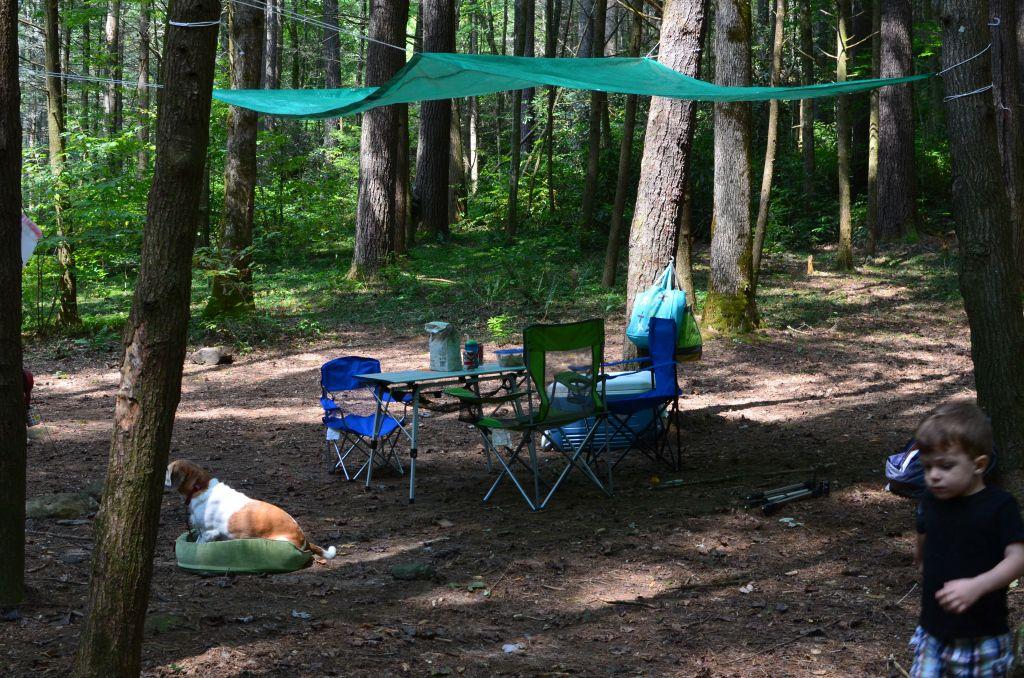 Tarp it up Family camping, Camping, Camping gear
