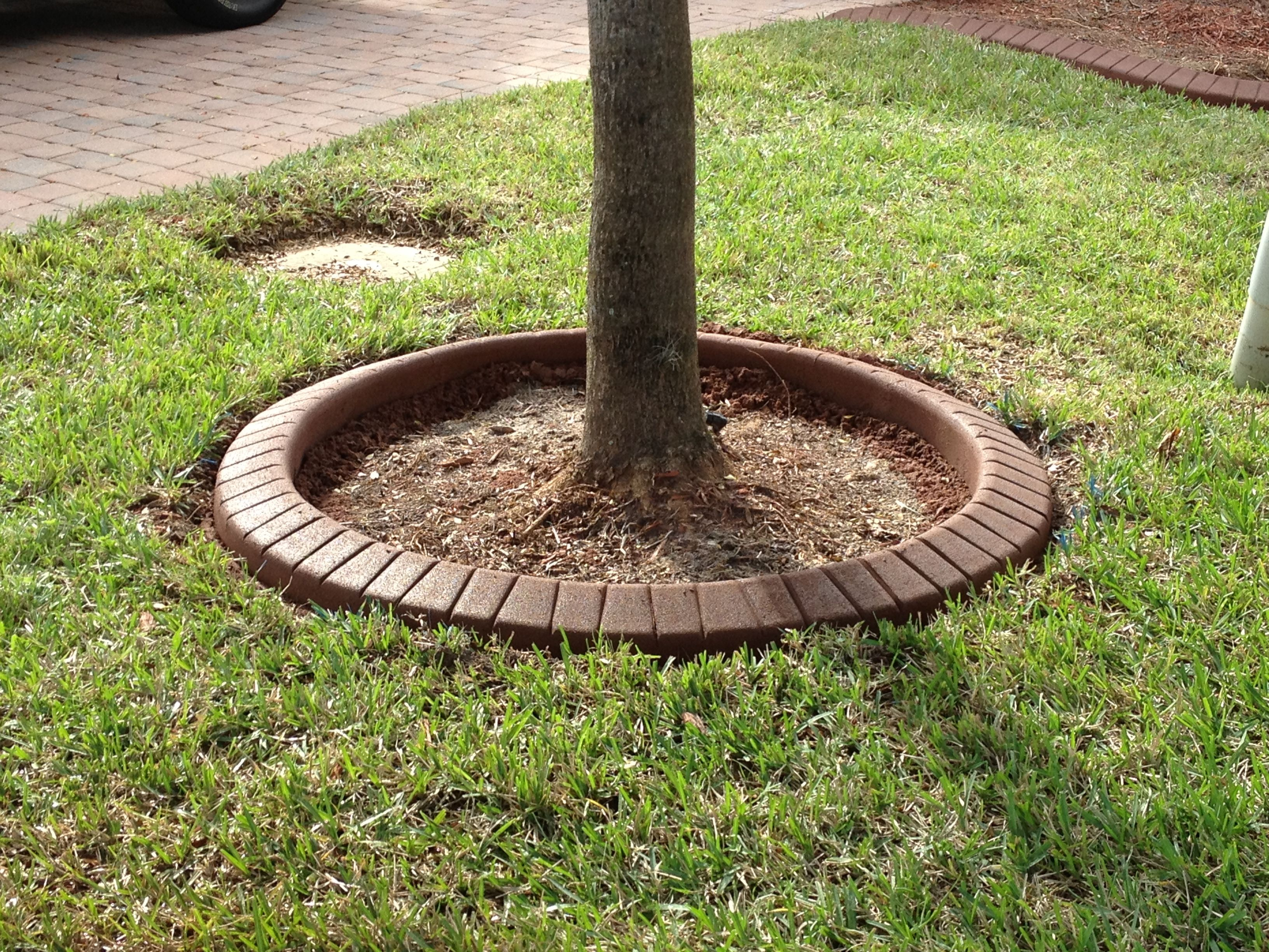 Perfect circle, tree ring. Brick stamp. Landscape