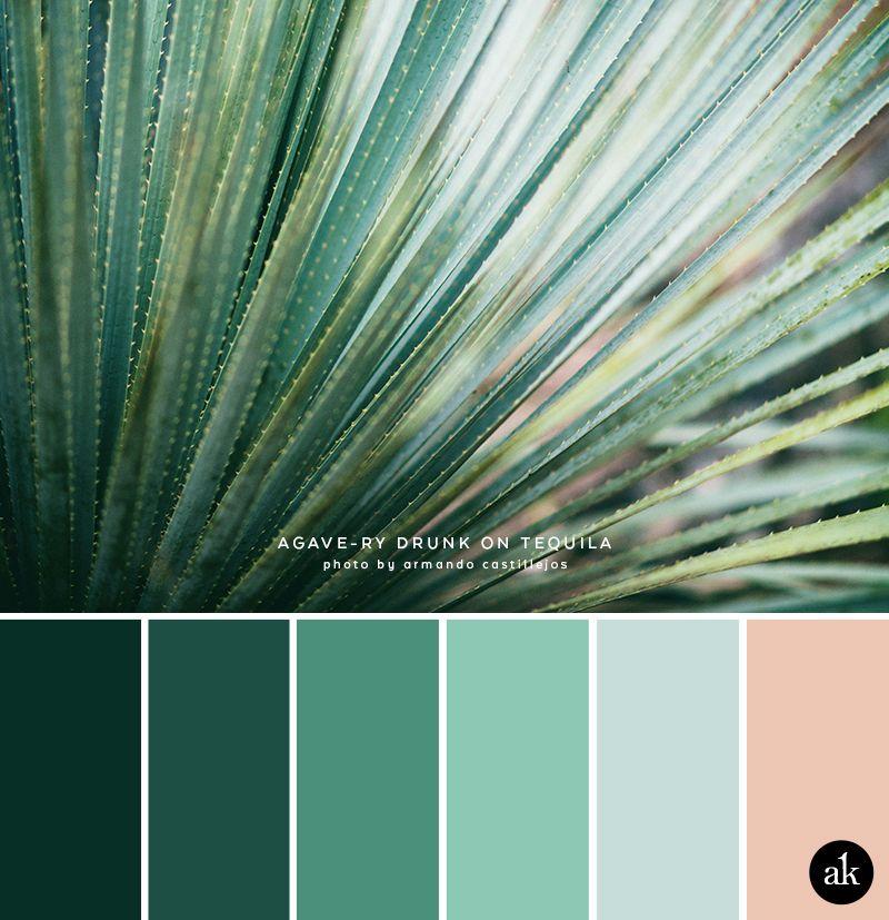 Color Palette Photo Contest