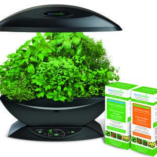 The Aerogarden Makes Indoor Gardening Easy With No Dirt 640 x 480