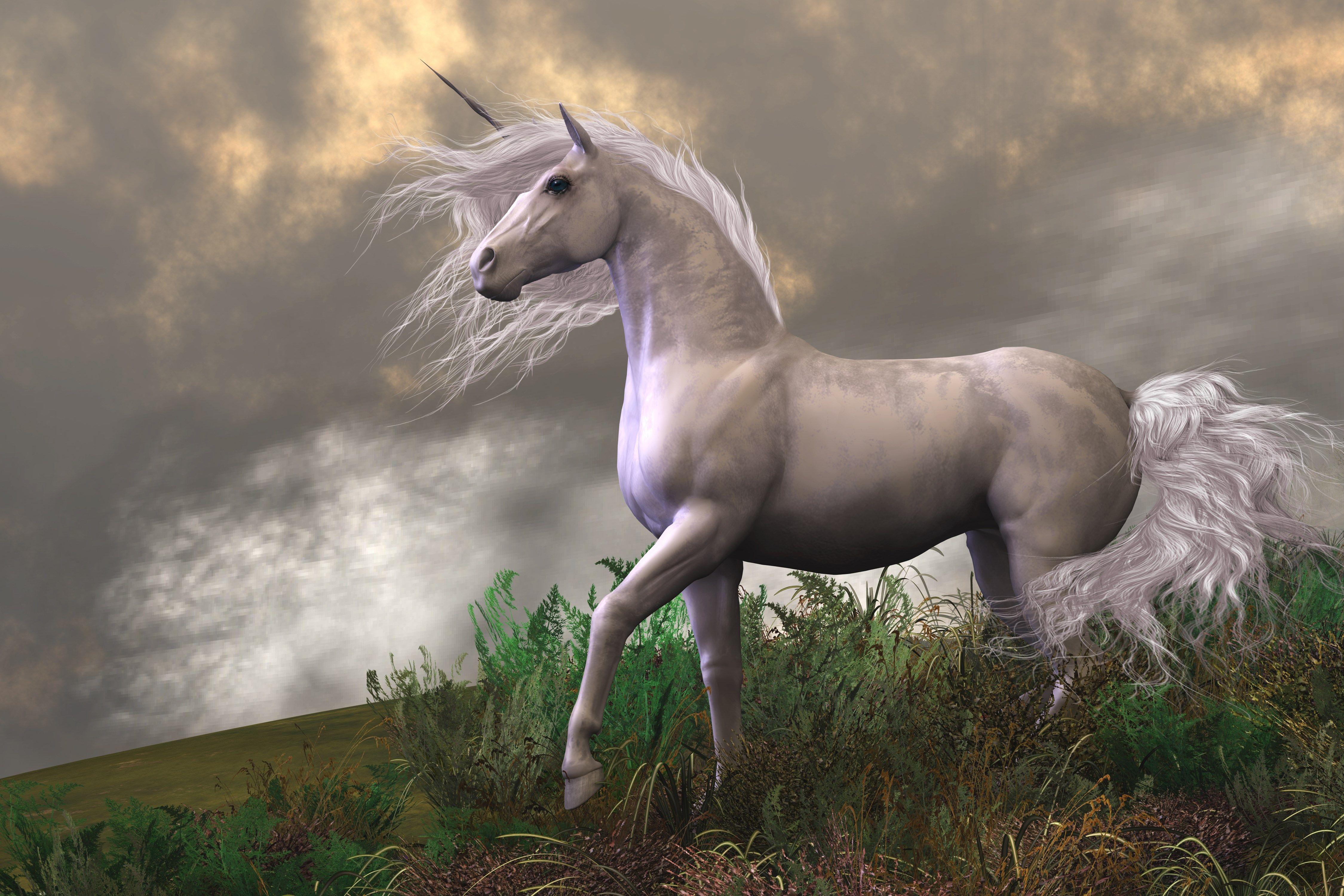 4k unicorn hd wallpaper (4500x3000)   Pinterest   Unicorns, Computer ...