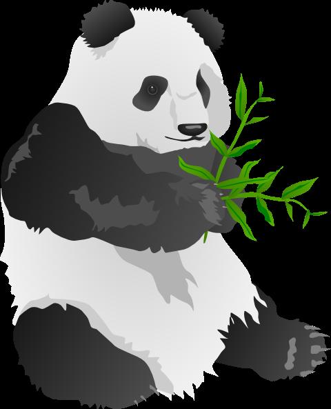 Paling Keren 30 Gambar Kartun Lucu Panda Panda Bear Clip Art At Clker Com Vector Clip Art Online Download Bamboo Panda Eating Free Kartun Lucu Gambar Kartun