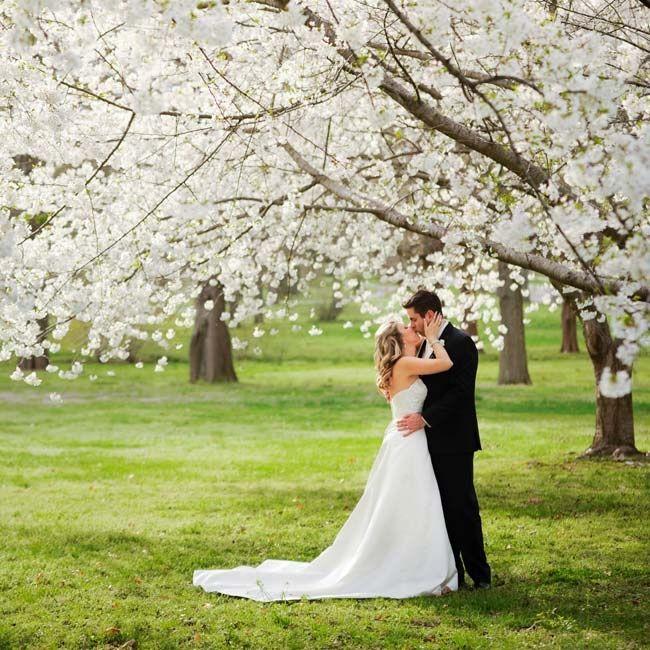 An Elegant Traditional Wedding in St. Louis, MO Wedding