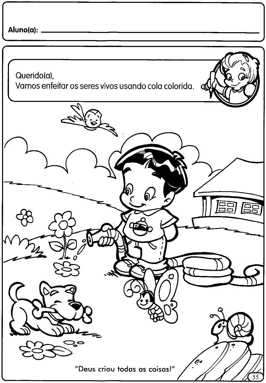 Atividades Educa C3 A7 C3 A3o Infantil Maternal Seres Vivos E N C3