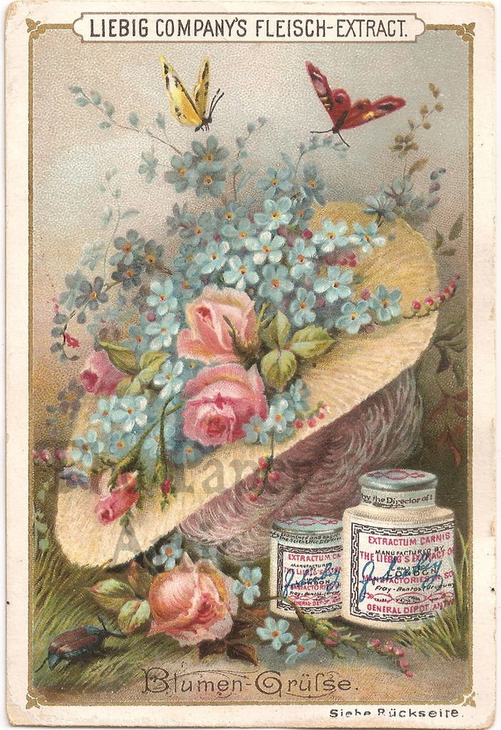 Antique Victorian French Liebig Trade Card Butterflies & Pink Roses in Sraw Hat | eBay
