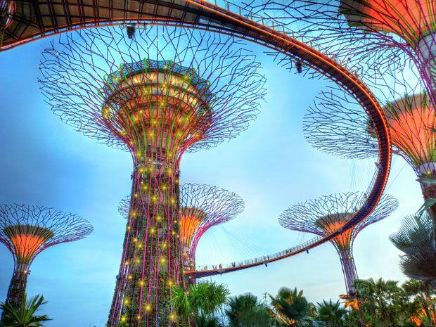 Singapur est construyendo actualmente su parque bot nico m s grande y ambicioso bajo el nombre for El super garden grove