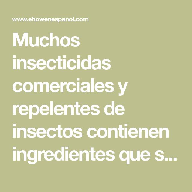 Aceites esenciales que repelen y matan a las pulgas, garrapatas, cucarachas y chinches