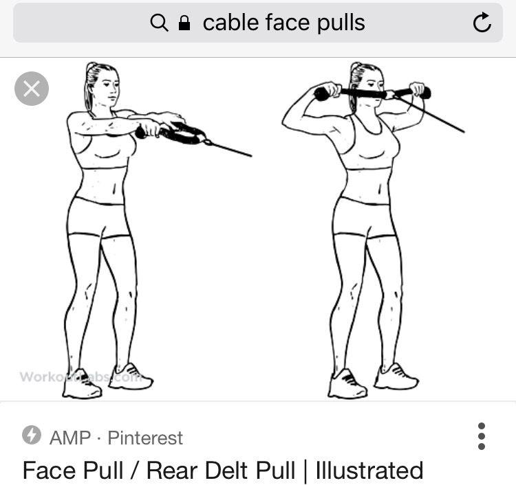 Pin de Katie Evans en An Arm Lifting Guide | Pinterest