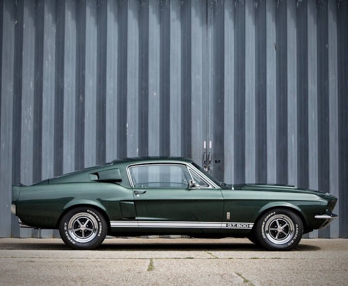 Serendipity Inspiration Life Mustang Gt500 Shelby Gt500 Mustang