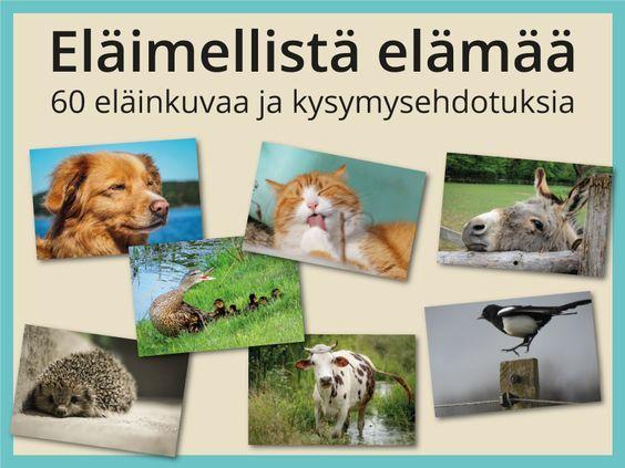 Eläimellistä elämää -kuvasarjassa on 60 valokuvaa ilmeikkäistä eläimistä. #elaimet #luonto #tunnetaidot #keskustelu #ryhmätoiminta #tulostettava