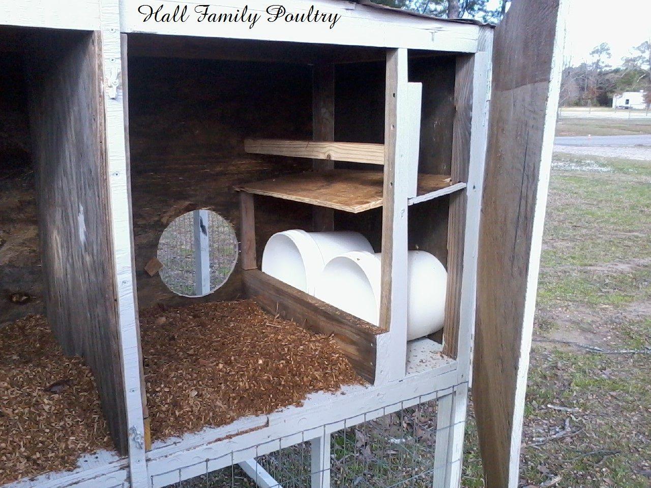 backyard coop plans for turkey chicken duck hatching
