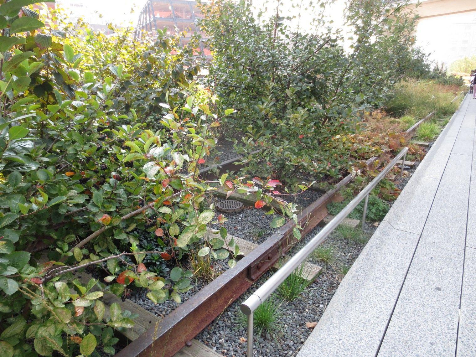 #garden on a #railway #usa