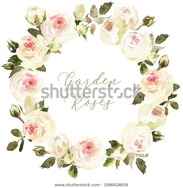 Illustration De Stock De Garden Roses Circle Round Wreath White 1686428839 Gardenroses Watercolor Watercolorwreath R Aquarelle Fleurs Illustration Graphic