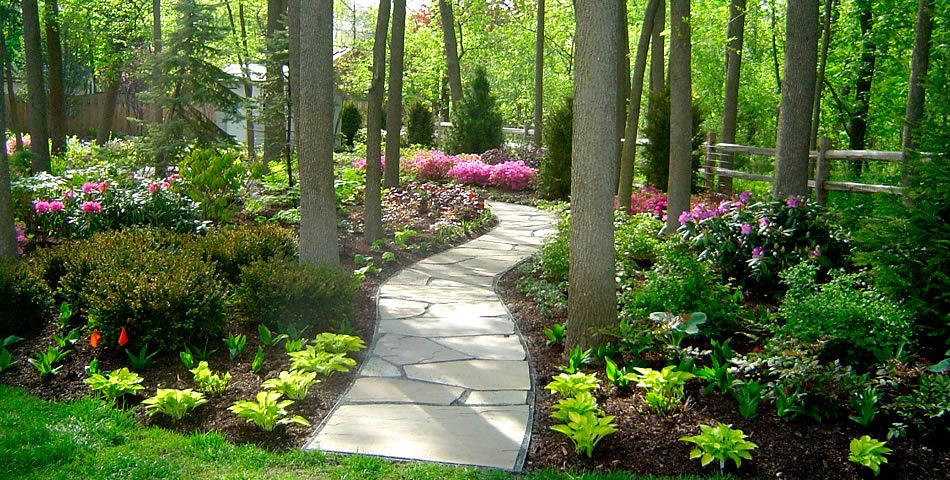Shade Garden Design Ideas form varieties shade garden plans smart design tips and ideas for a shaded garden 1000 Images About Landscape On Pinterest Shade Garden Shade Landscaping And Landscaping