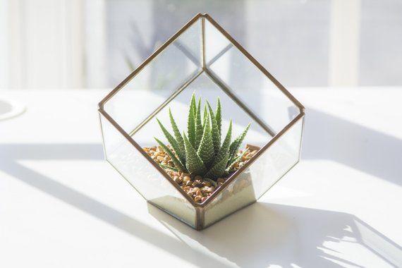 Geometric Terrarium Diy Kit Products In 2018 Terrarium Diy Diy