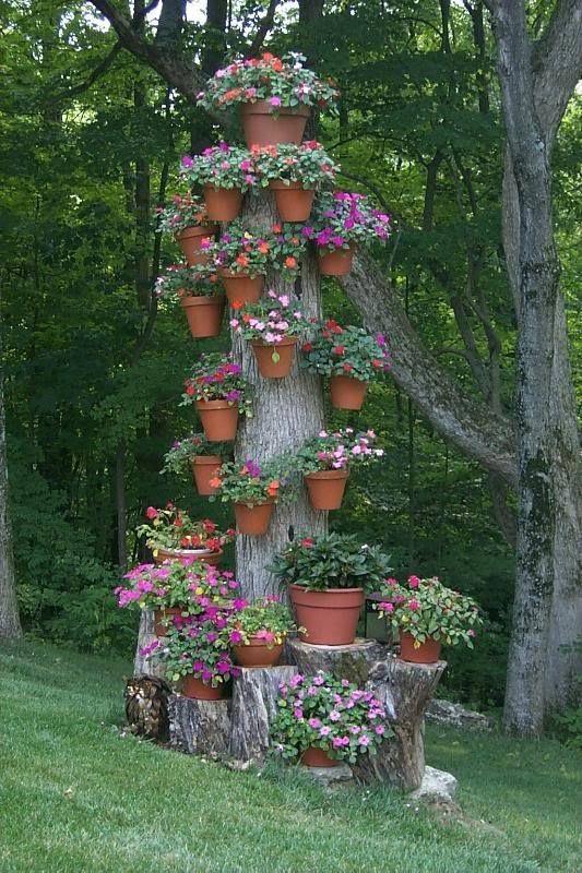 tronco utilizado como pedestal para colgar maceteros con plantas