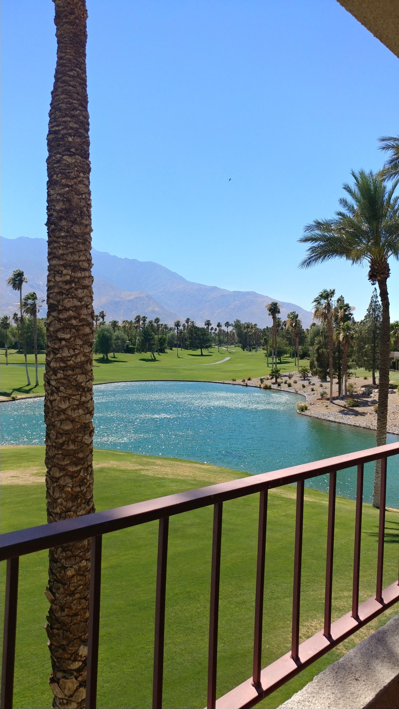 The Double Tree Hilton Golf Resort in Palm Springs is my